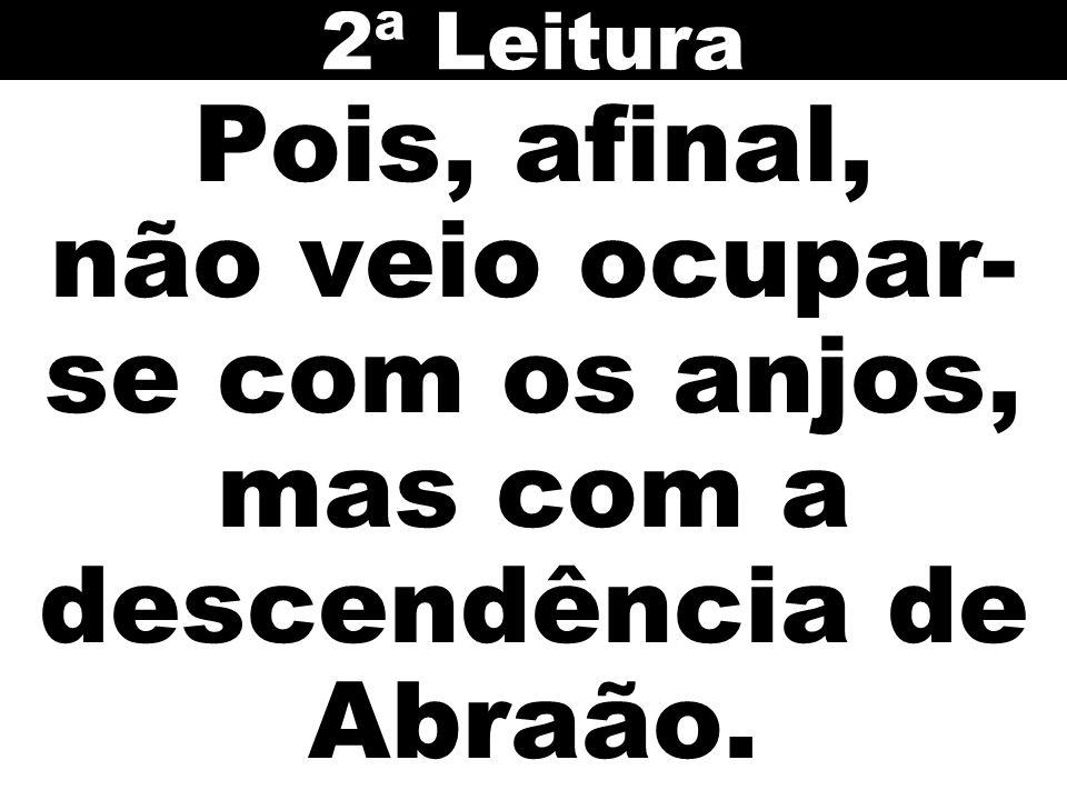 2ª Leitura Pois, afinal, não veio ocupar-se com os anjos, mas com a descendência de Abraão.