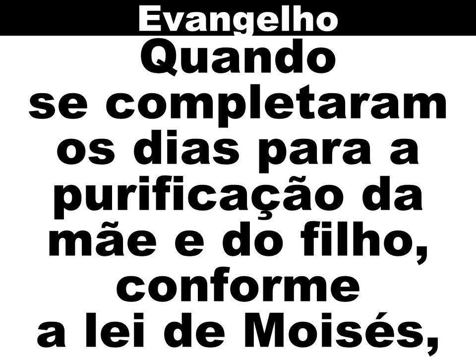 Evangelho Quando se completaram os dias para a purificação da mãe e do filho, conforme a lei de Moisés,