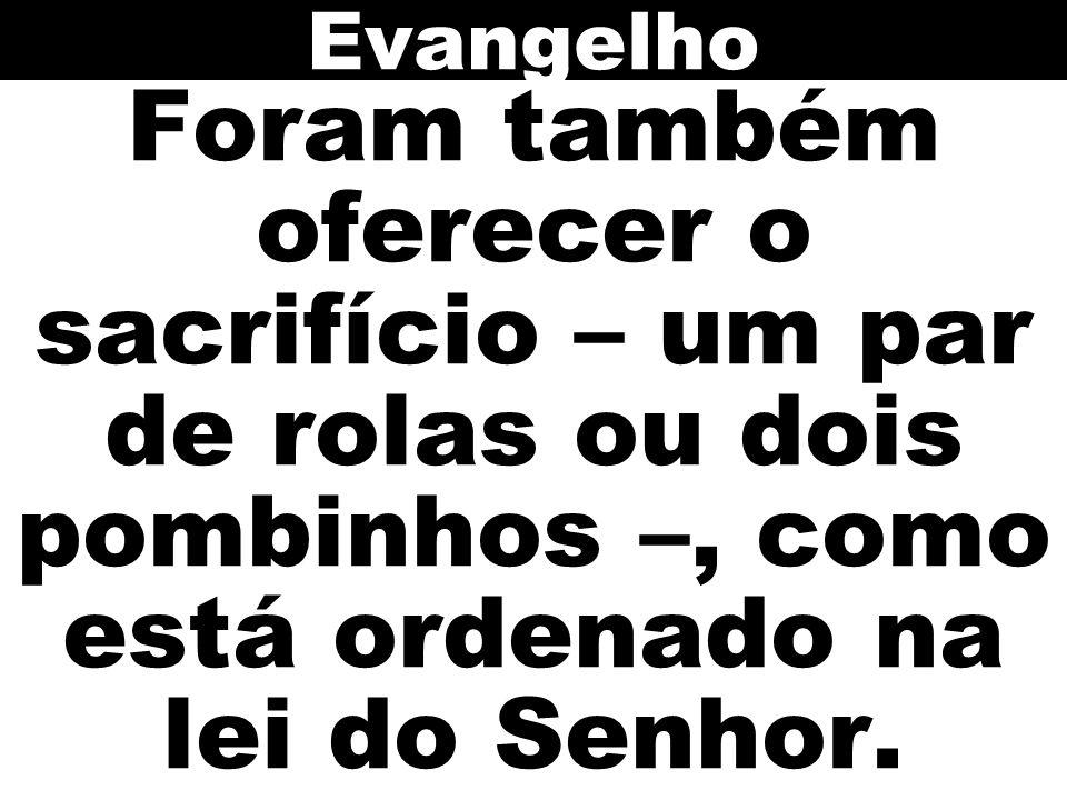 Evangelho Foram também oferecer o sacrifício – um par de rolas ou dois pombinhos –, como está ordenado na lei do Senhor.