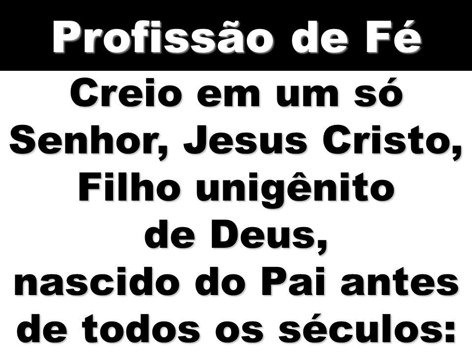 Profissão de Fé Creio em um só Senhor, Jesus Cristo, Filho unigênito