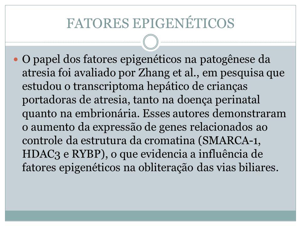 FATORES EPIGENÉTICOS
