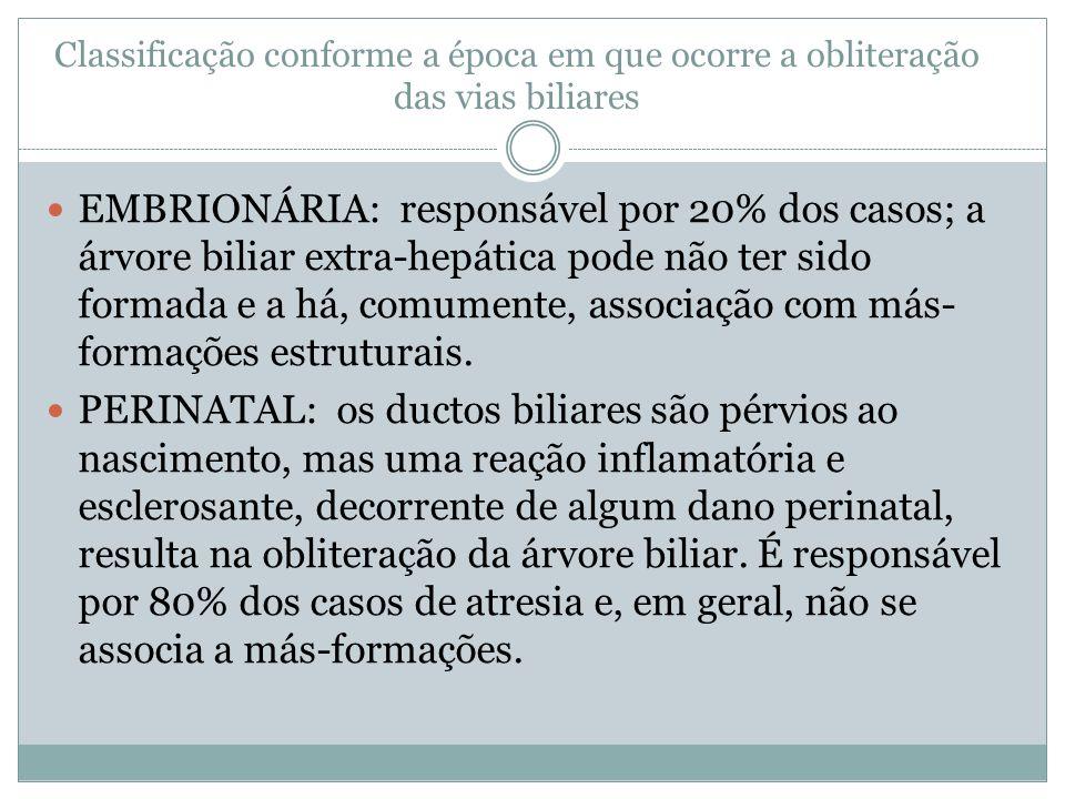 Classificação conforme a época em que ocorre a obliteração das vias biliares