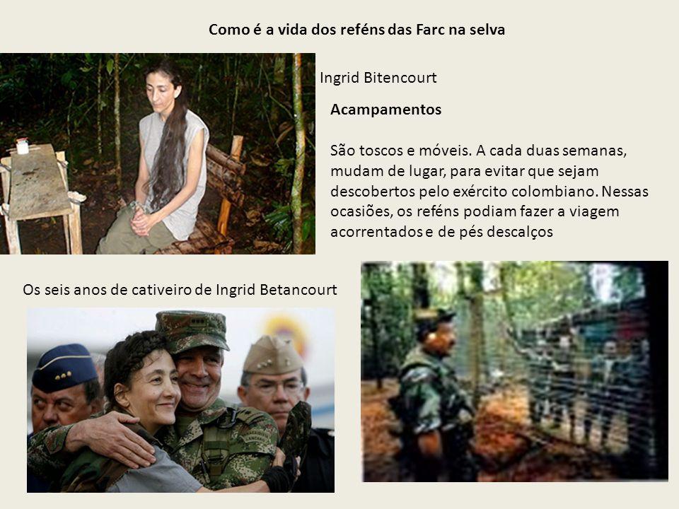Como é a vida dos reféns das Farc na selva