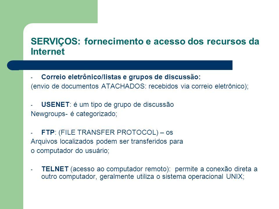 SERVIÇOS: fornecimento e acesso dos recursos da Internet