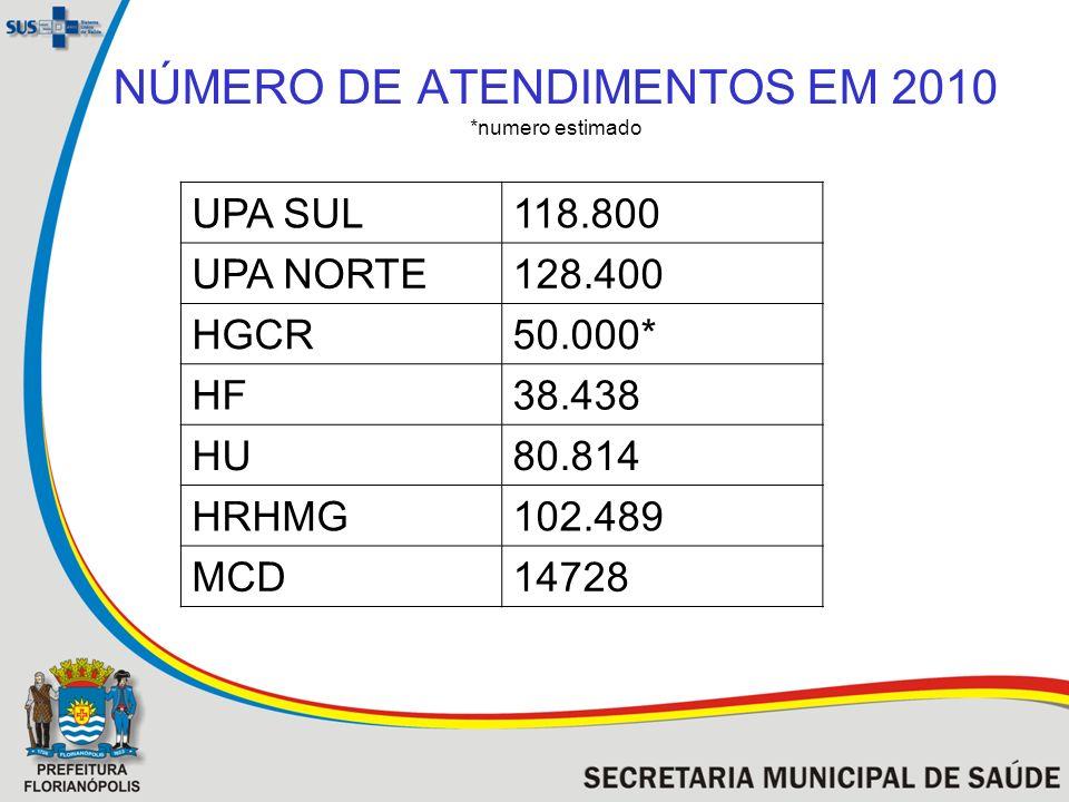 NÚMERO DE ATENDIMENTOS EM 2010 *numero estimado
