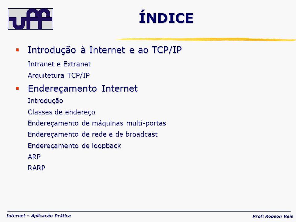 ÍNDICE Introdução à Internet e ao TCP/IP Endereçamento Internet