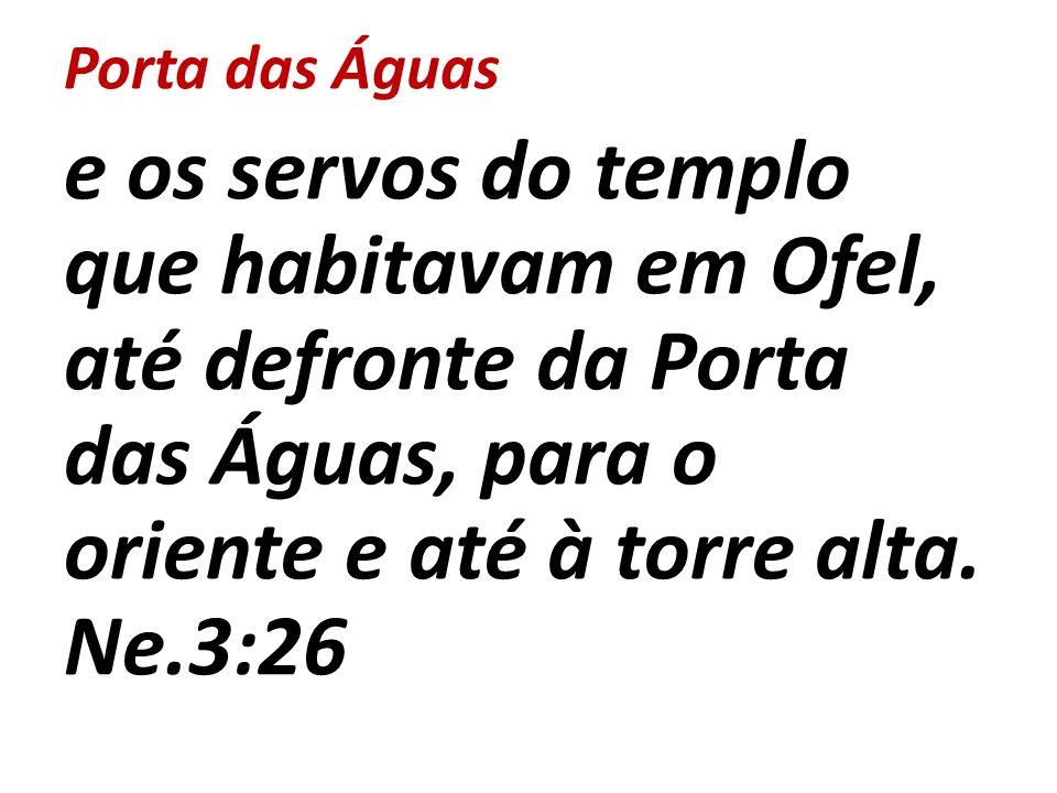 Porta das Águas e os servos do templo que habitavam em Ofel, até defronte da Porta das Águas, para o oriente e até à torre alta.