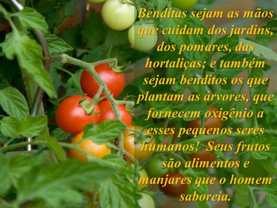 Benditas sejam as mãos que cuidam dos jardins, dos pomares, das hortaliças; e também sejam benditos os que plantam as árvores, que fornecem oxigênio a esses pequenos seres humanos.