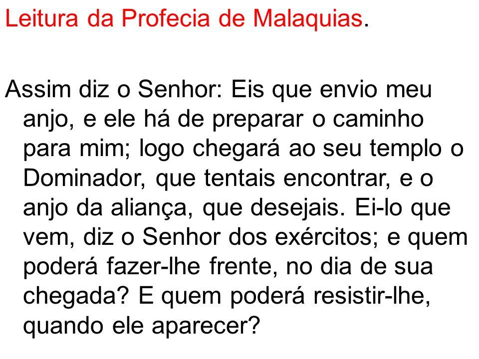 Leitura da Profecia de Malaquias
