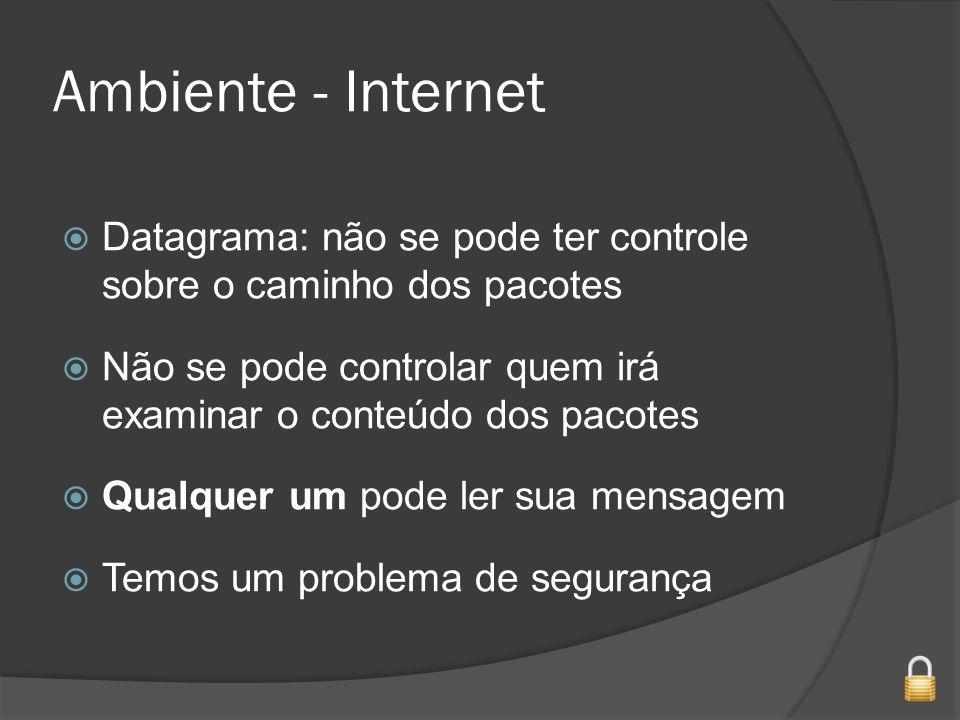 Ambiente - Internet Datagrama: não se pode ter controle sobre o caminho dos pacotes.