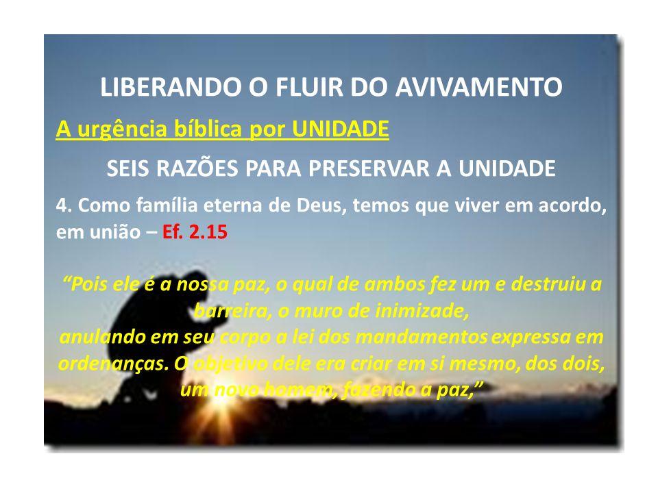 LIBERANDO O FLUIR DO AVIVAMENTO SEIS RAZÕES PARA PRESERVAR A UNIDADE