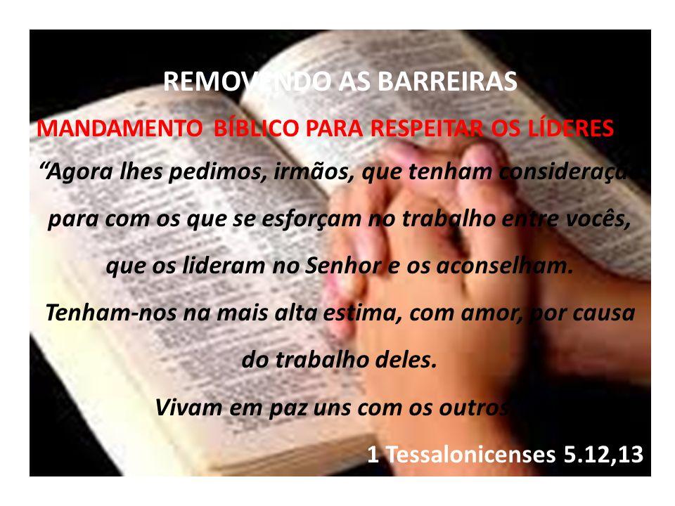 REMOVENDO AS BARREIRAS