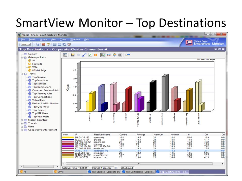 SmartView Monitor – Top Destinations