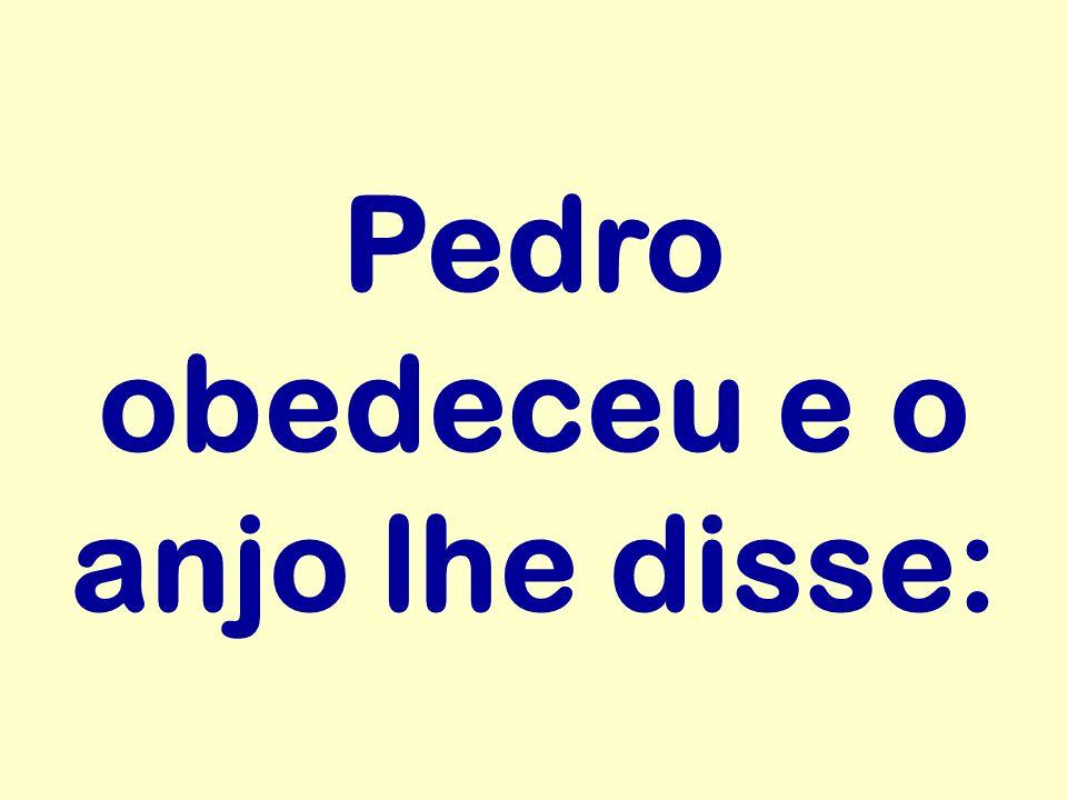 Pedro obedeceu e o anjo lhe disse: