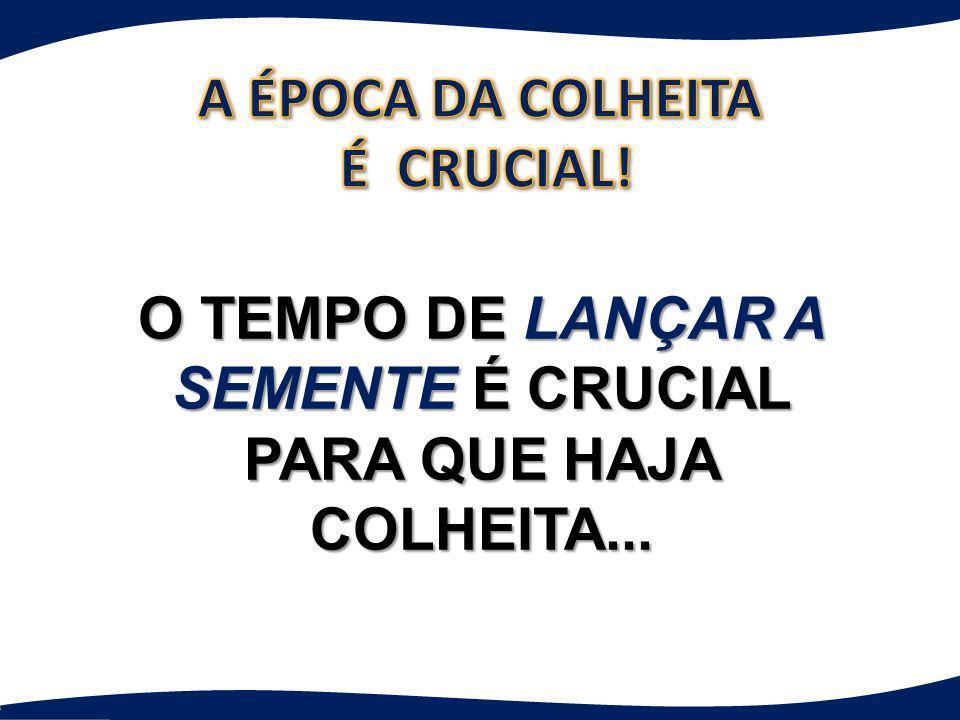 A ÉPOCA DA COLHEITA É CRUCIAL!