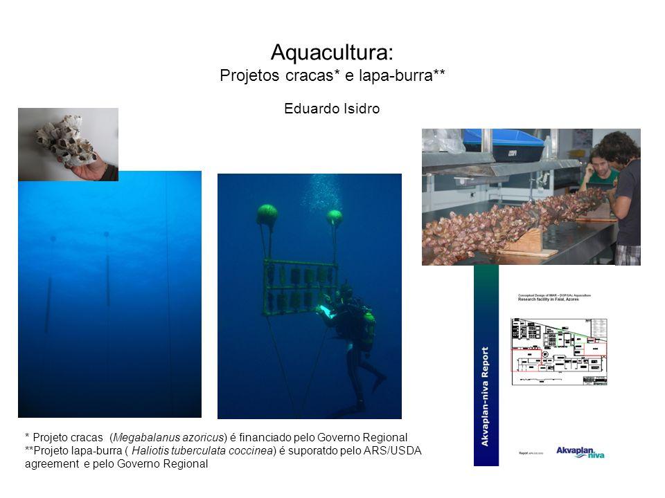 Aquacultura: Projetos cracas* e lapa-burra**