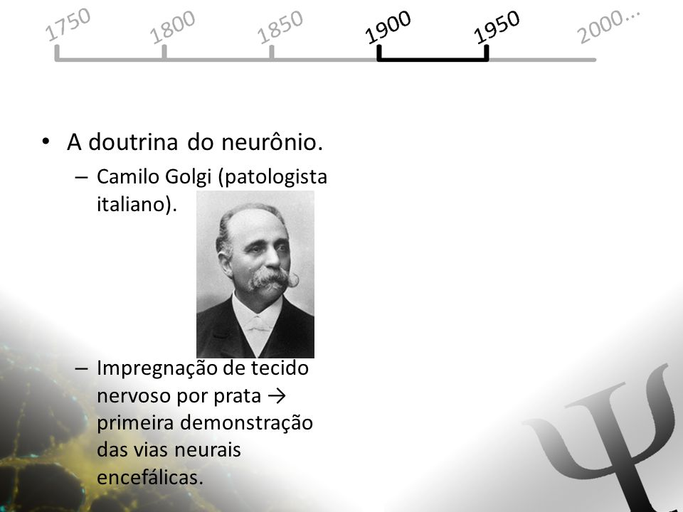 A doutrina do neurônio. Camilo Golgi (patologista italiano).