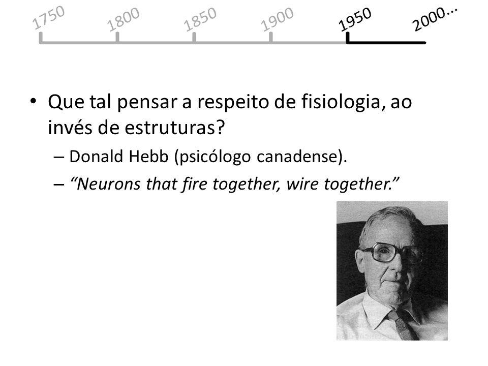 Que tal pensar a respeito de fisiologia, ao invés de estruturas