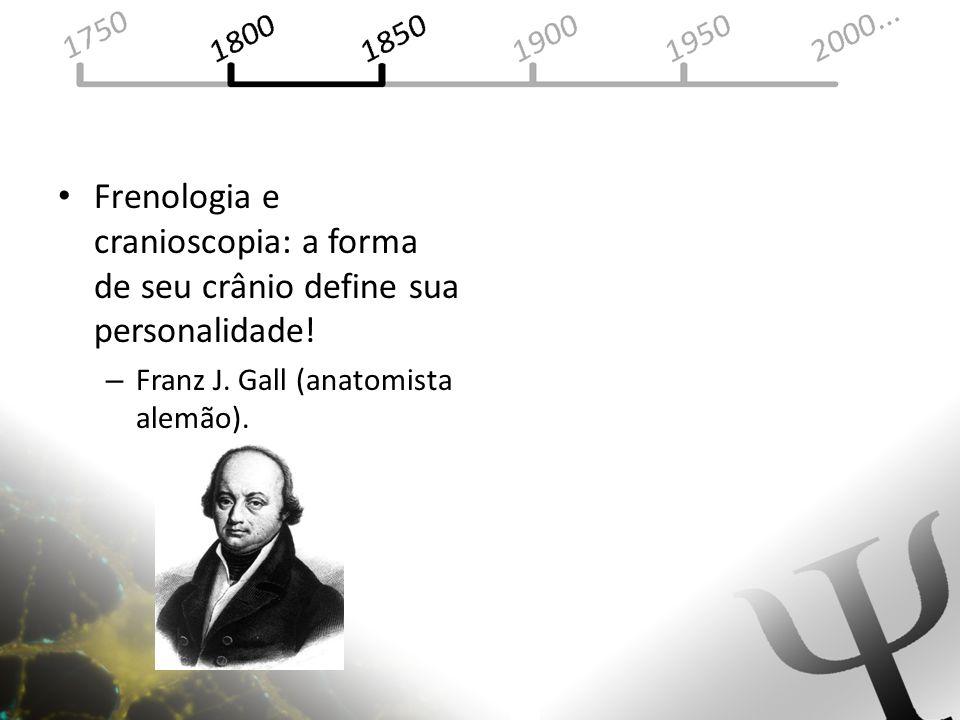 Frenologia e cranioscopia: a forma de seu crânio define sua personalidade!