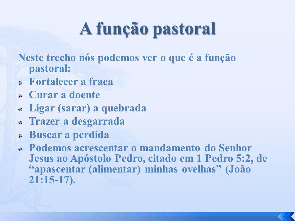 A função pastoral Neste trecho nós podemos ver o que é a função pastoral: Fortalecer a fraca. Curar a doente.