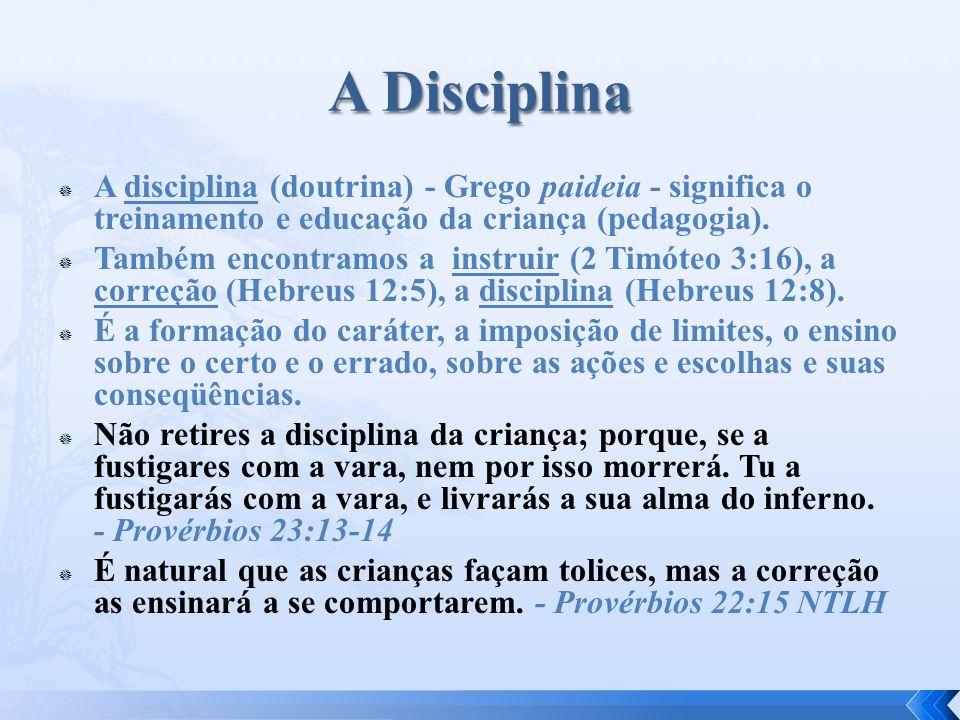 A Disciplina A disciplina (doutrina) - Grego paideia - significa o treinamento e educação da criança (pedagogia).