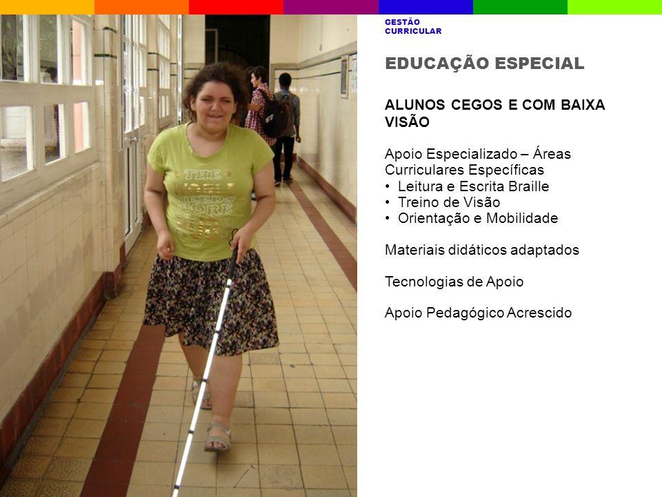 EDUCAÇÃO ESPECIAL ALUNOS CEGOS E COM BAIXA VISÃO