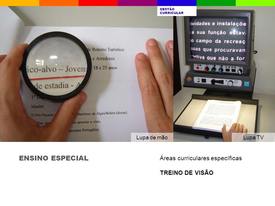ENSINO ESPECIAL Áreas curriculares específicas TREINO DE VISÃO