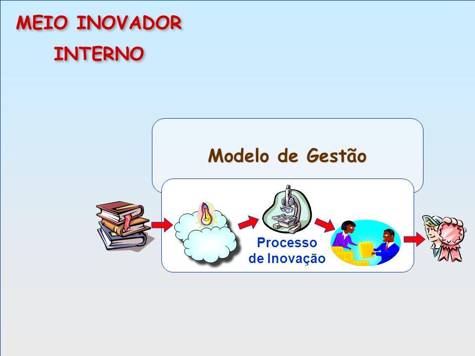 MEIO INOVADOR INTERNO Modelo de Gestão