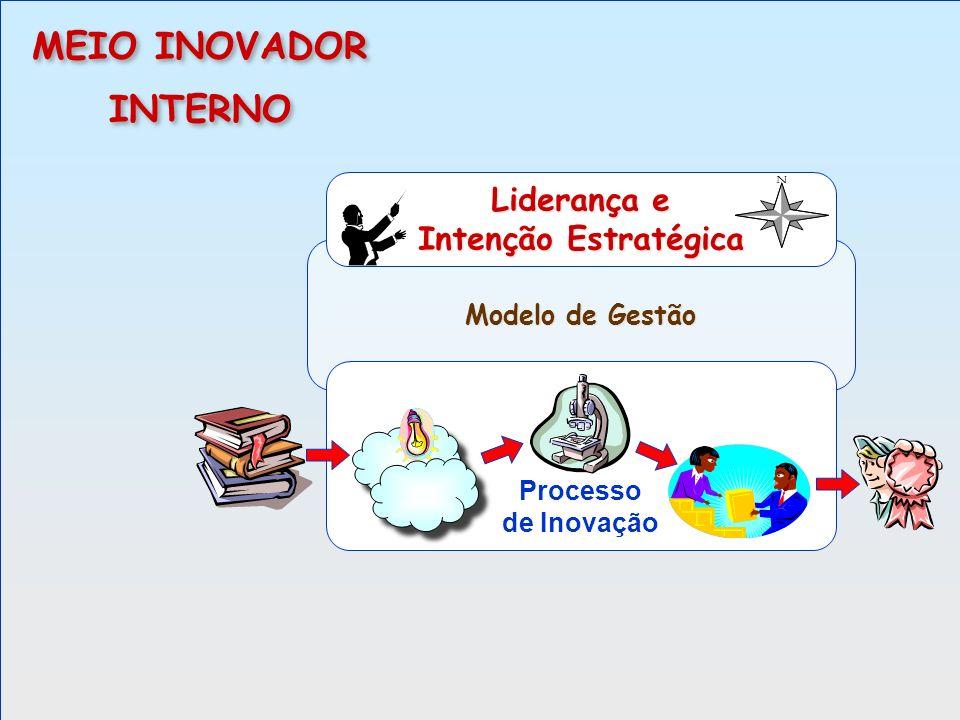 MEIO INOVADOR INTERNO Liderança e Intenção Estratégica