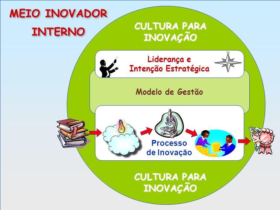 MEIO INOVADOR INTERNO CULTURA PARA INOVAÇÃO CULTURA PARA INOVAÇÃO