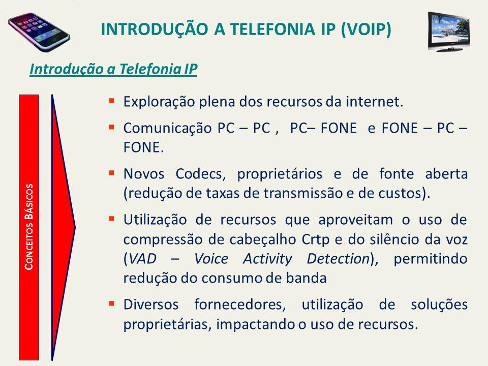 Introdução a Telefonia IP (VoIP) Introdução a Telefonia IP