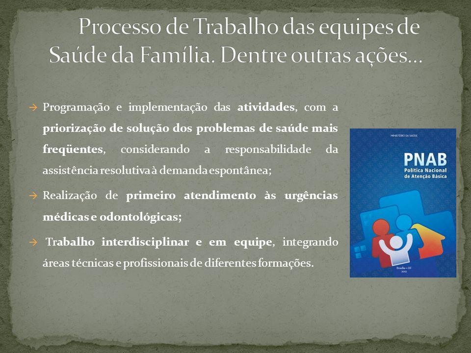 Processo de Trabalho das equipes de Saúde da Família