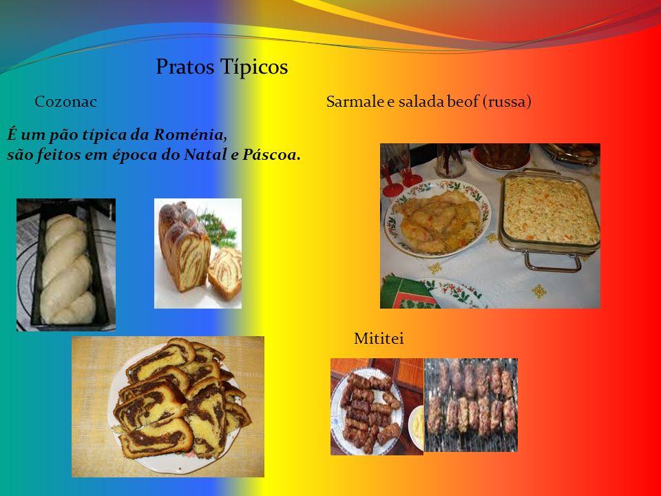 Pratos Típicos Cozonac Sarmale e salada beof (russa)