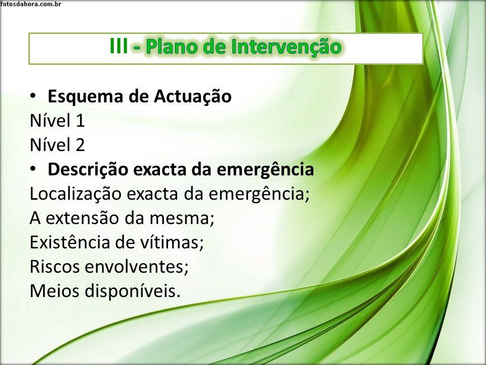 III - Plano de Intervenção