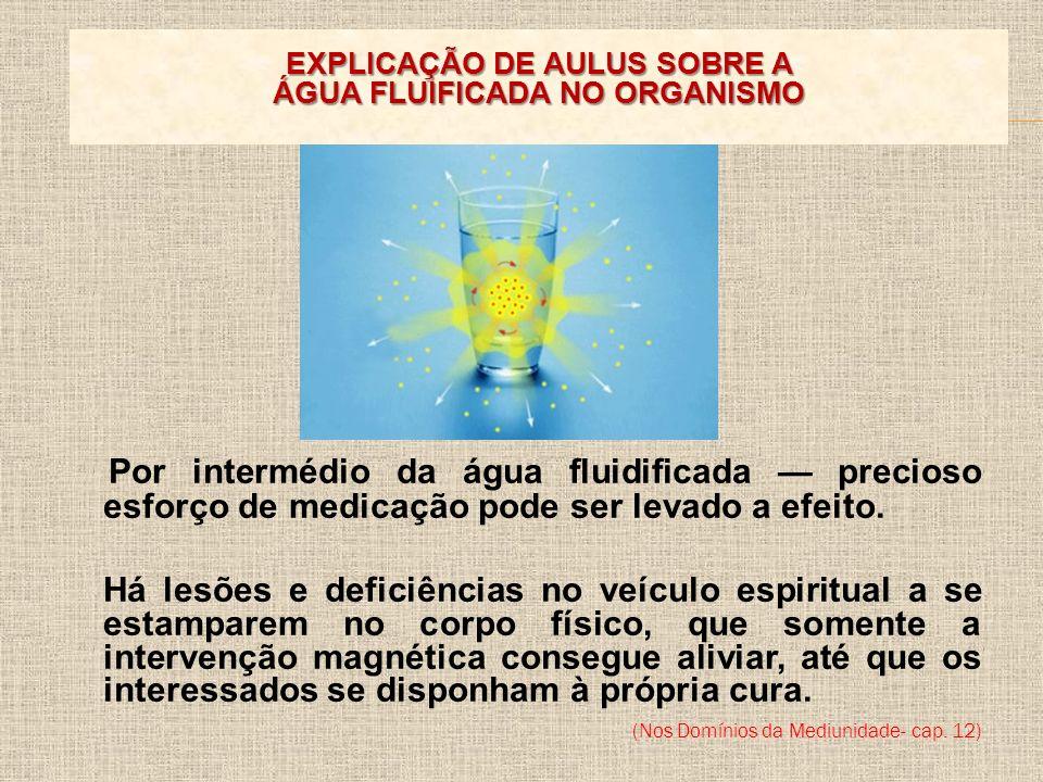 EXPLICAÇÃO DE AULUS SOBRE A