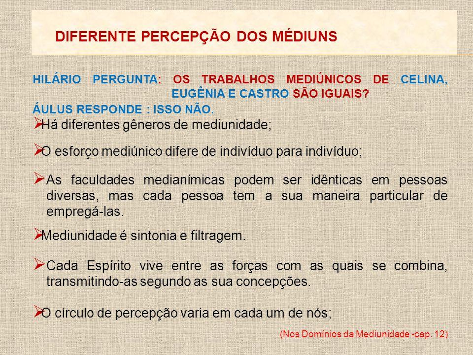 DIFERENTE PERCEPÇÃO DOS MÉDIUNS