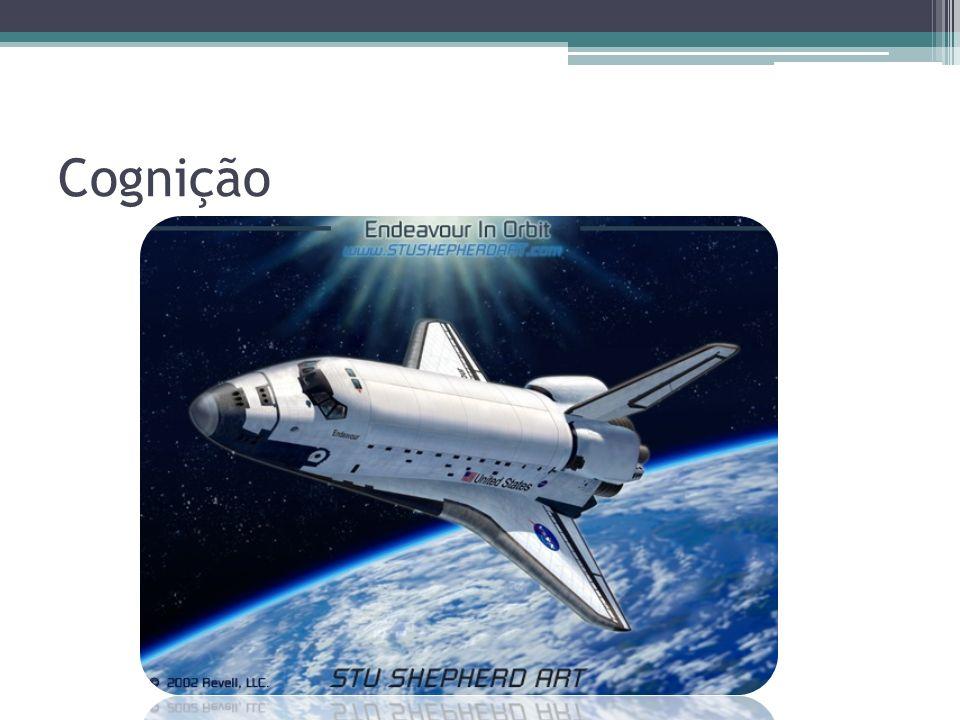 Cognição Fonte da imagem: http://www.stushepherdart.com/AviationArt_EndeavourInOrbit.html