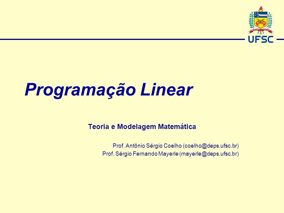 Teoria e Modelagem Matemática