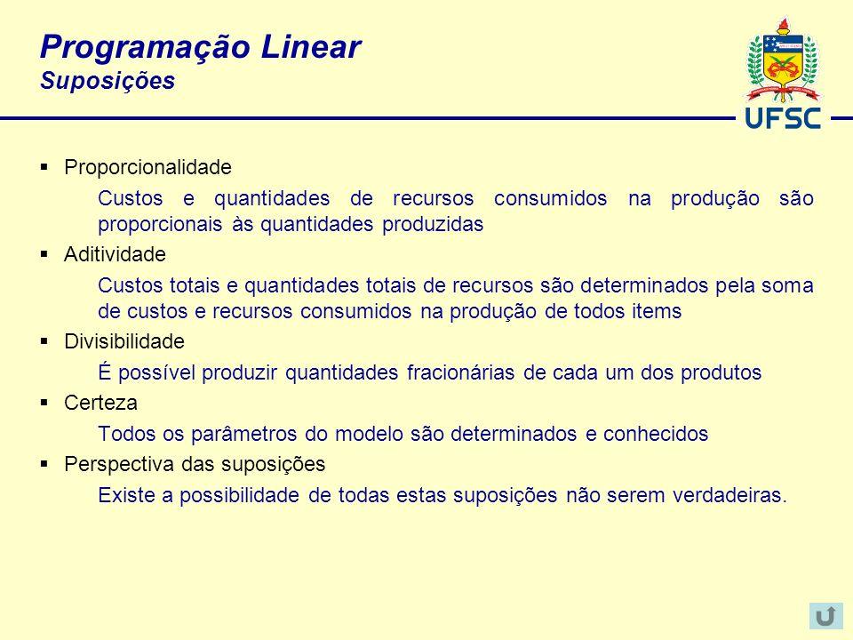 Programação Linear Suposições