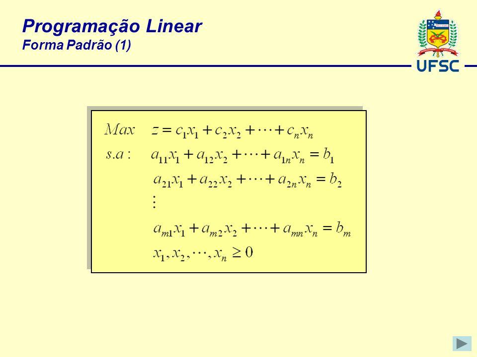 Programação Linear Forma Padrão (1)