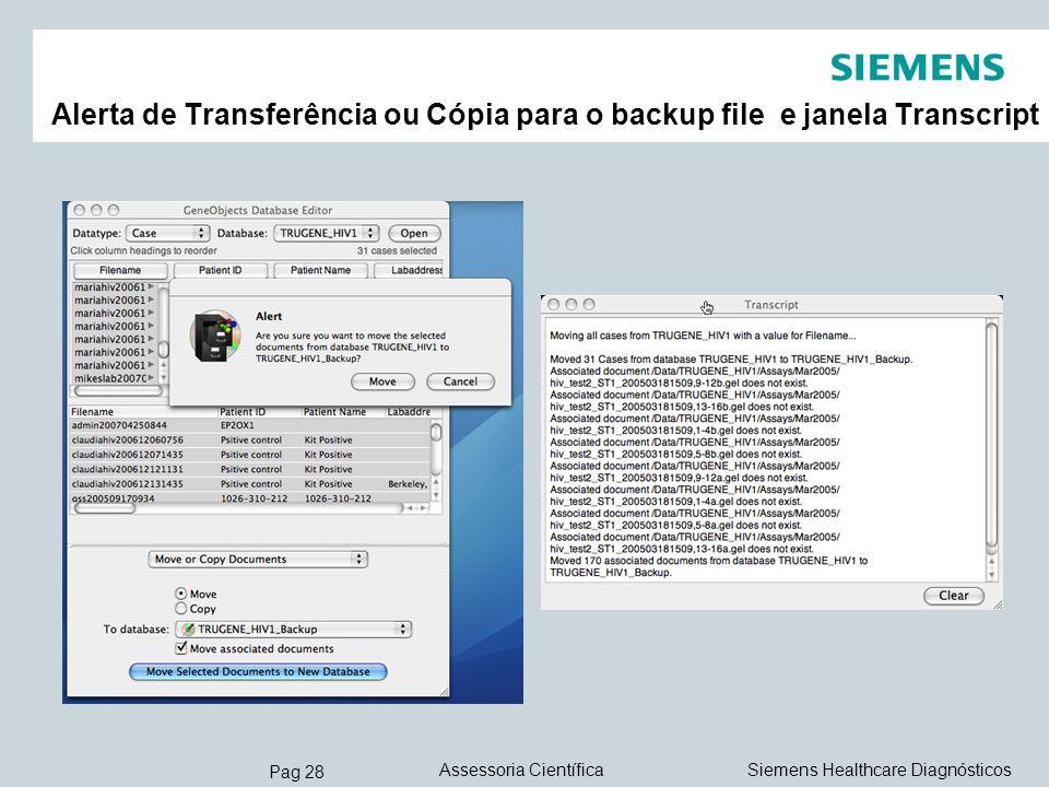 Alerta de Transferência ou Cópia para o backup file e janela Transcript