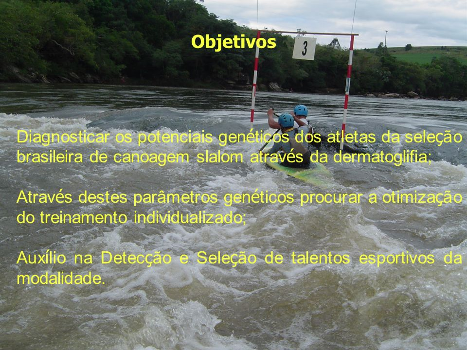 Objetivos Diagnosticar os potenciais genéticos dos atletas da seleção brasileira de canoagem slalom através da dermatoglifia;
