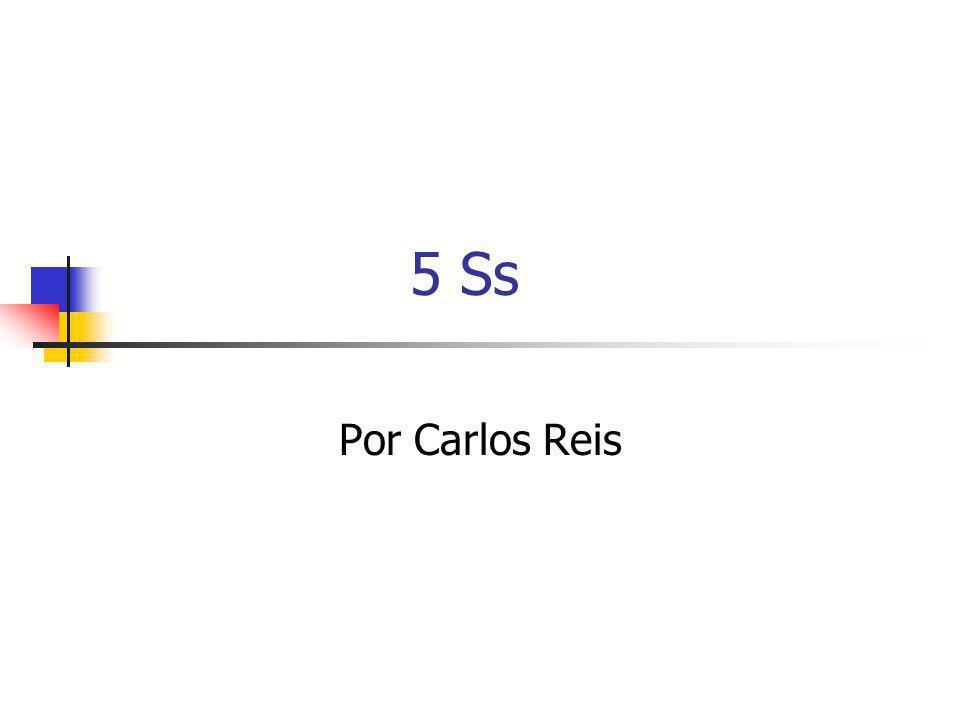 5 Ss Por Carlos Reis
