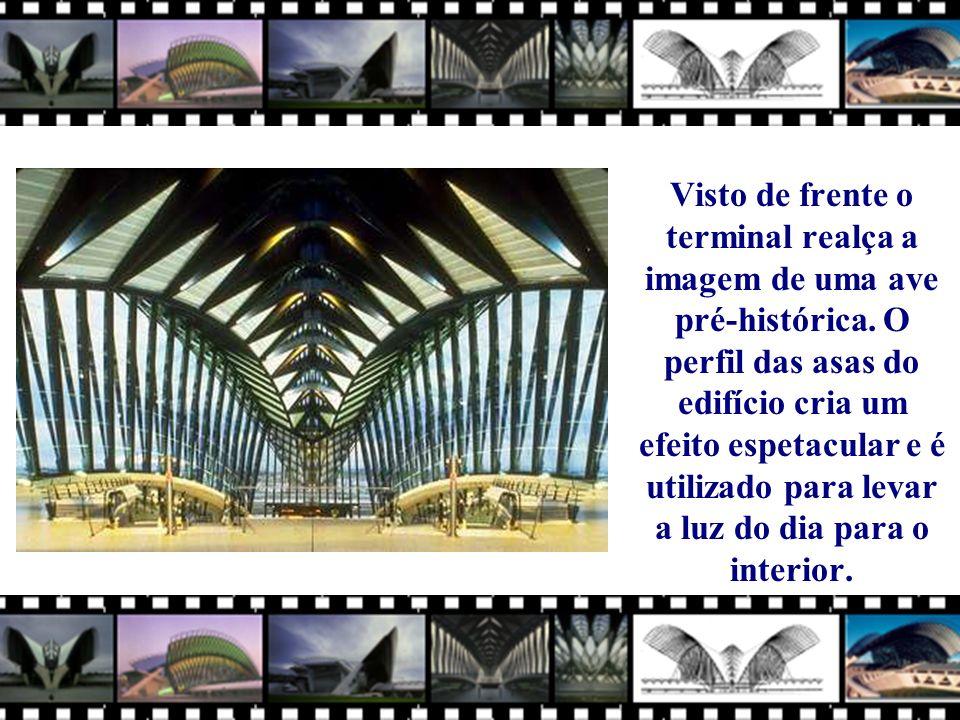 Visto de frente o terminal realça a imagem de uma ave pré-histórica