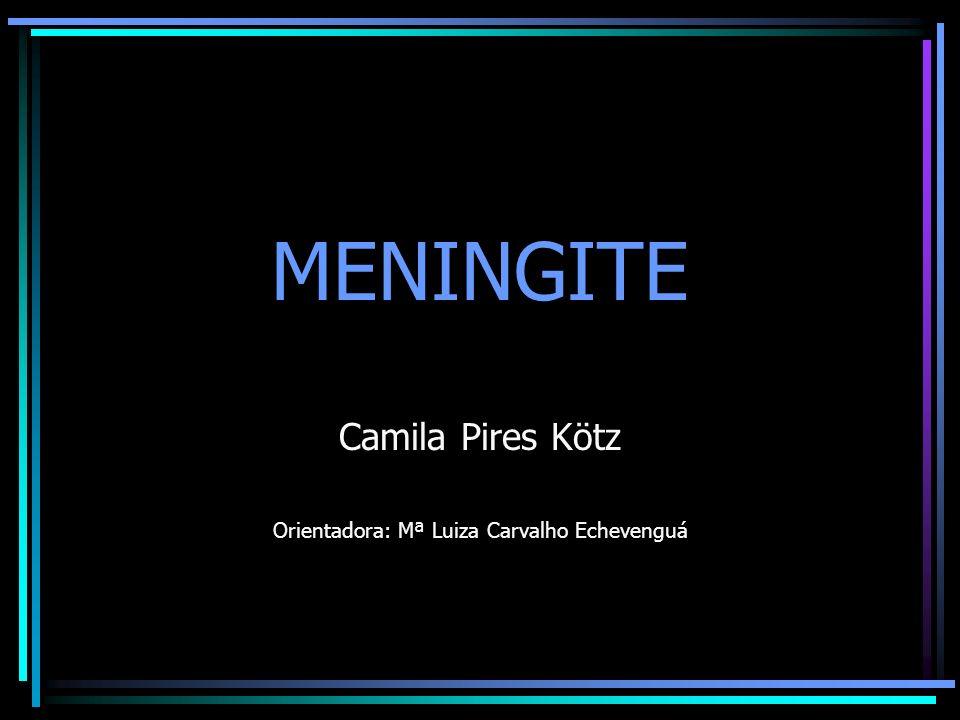 Camila Pires Kötz Orientadora: Mª Luiza Carvalho Echevenguá