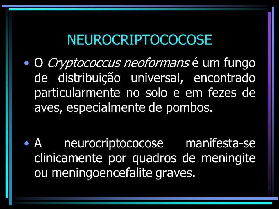 NEUROCRIPTOCOCOSE