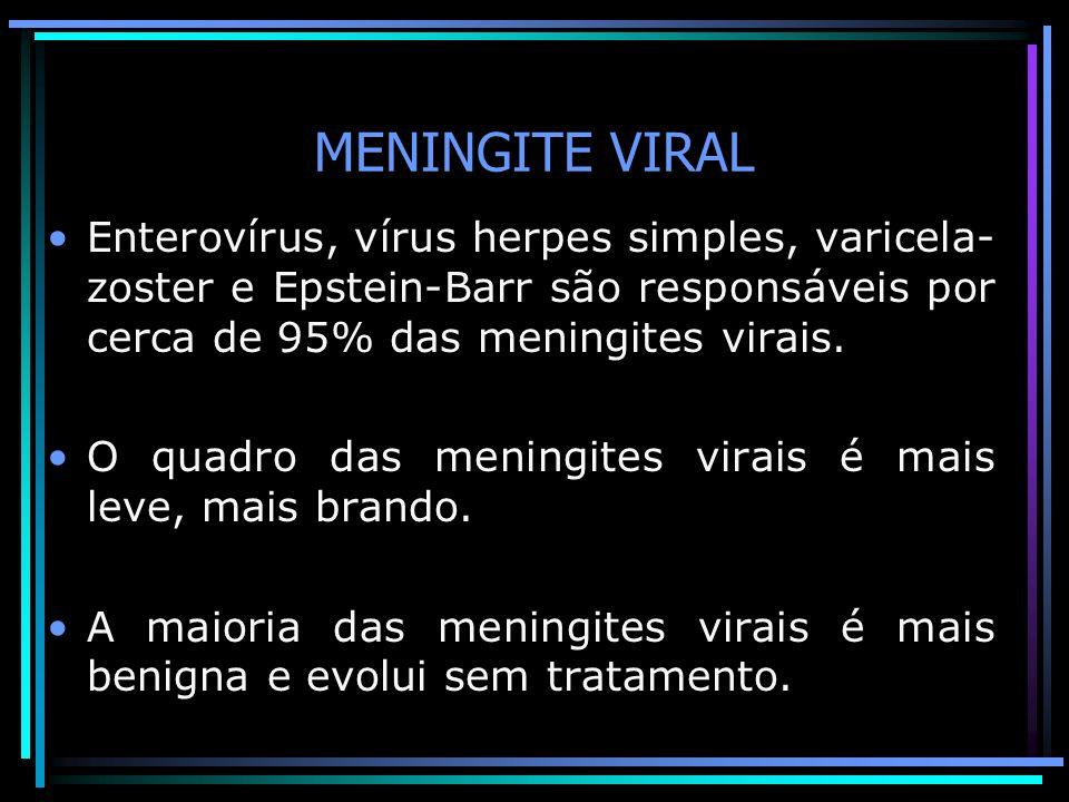 MENINGITE VIRAL Enterovírus, vírus herpes simples, varicela-zoster e Epstein-Barr são responsáveis por cerca de 95% das meningites virais.