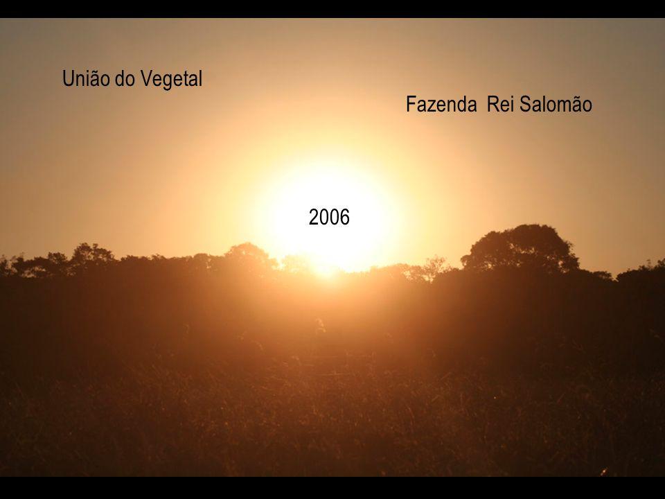 União do Vegetal Fazenda Rei Salomão 2006