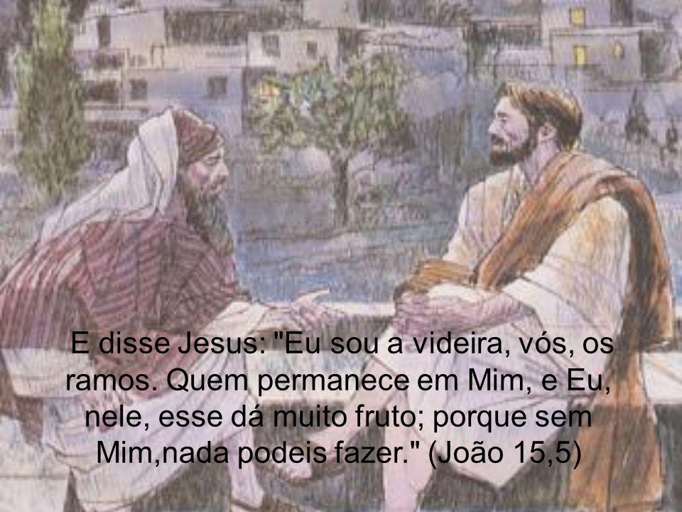 E disse Jesus: Eu sou a videira, vós, os ramos