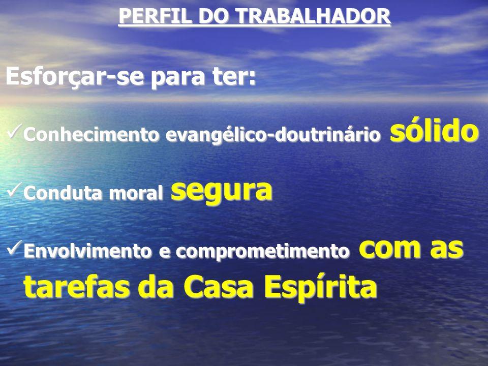 Esforçar-se para ter: PERFIL DO TRABALHADOR